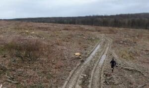 PREDSTAVNIK EUROPSKE KOMISIJE ŠOKIRAN! 'Šume su vam potpuno devastirali, ovo je ZLOČIN!'