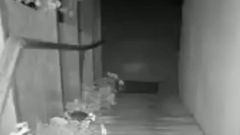 SNIMKA Pogledajte trenutak potresa 4.2 Richtera u Petrinji: '10 sekundi trajalo kao vječnost'